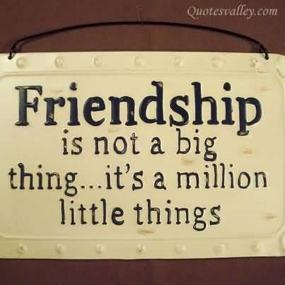 friendship-is-not-a-big-thing